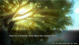Vision of Aurora Borealis
