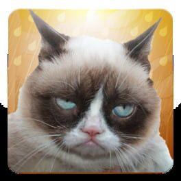 Grumpy Cat: Unimpressed