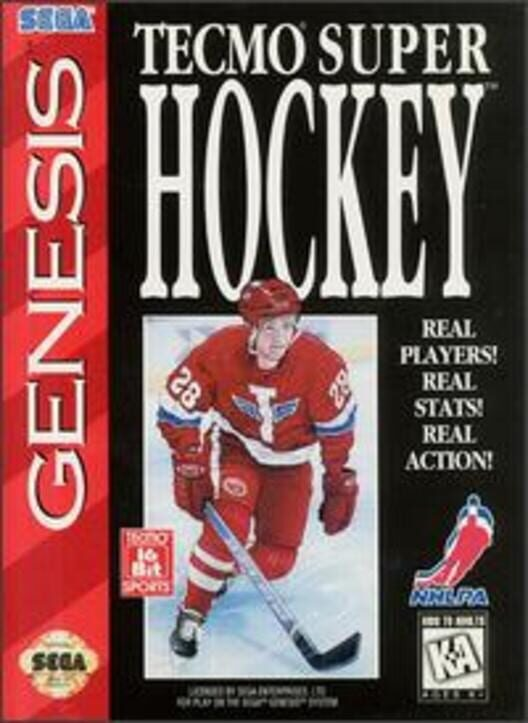 Tecmo Super Hockey Display Picture