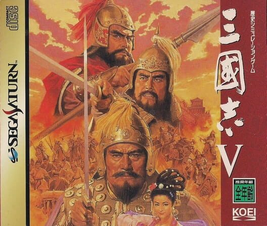 Romance of the Three Kingdoms V image