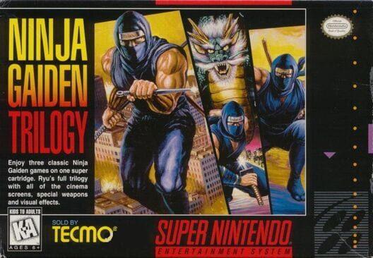 Ninja Gaiden Trilogy Display Picture