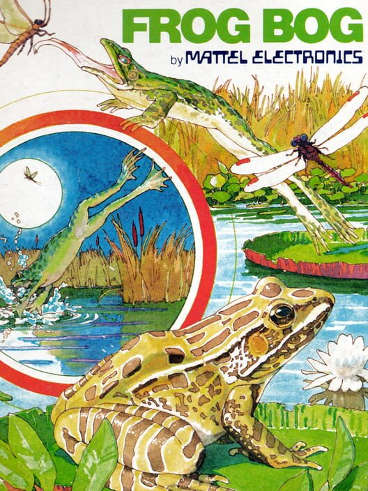 Frogs and Flies Display Picture