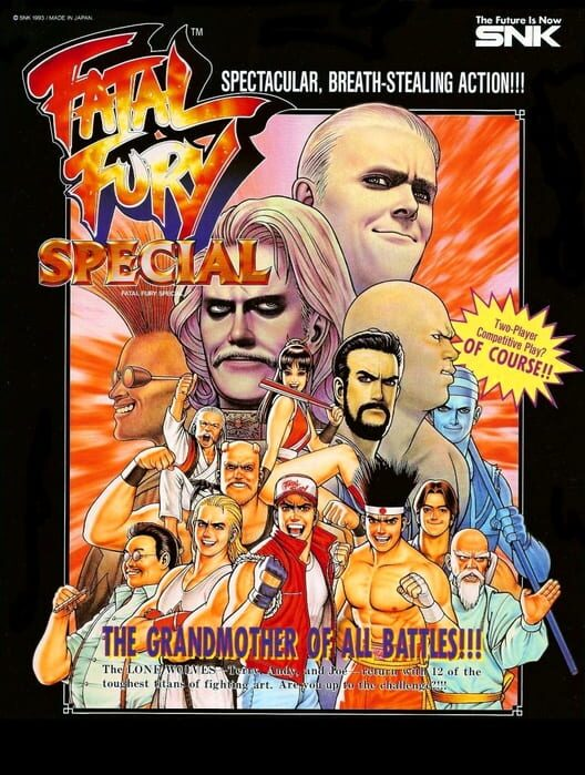 Fatal Fury Special Display Picture