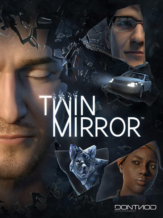 Twin Mirror Display Picture