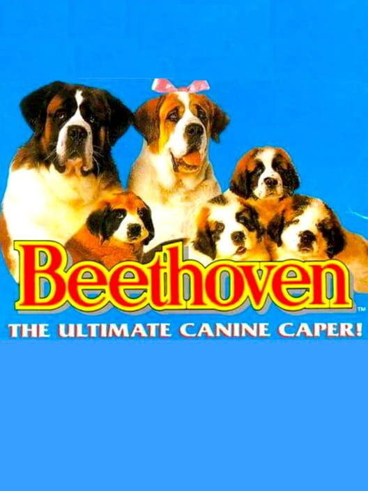 Beethoven's 2nd Display Picture