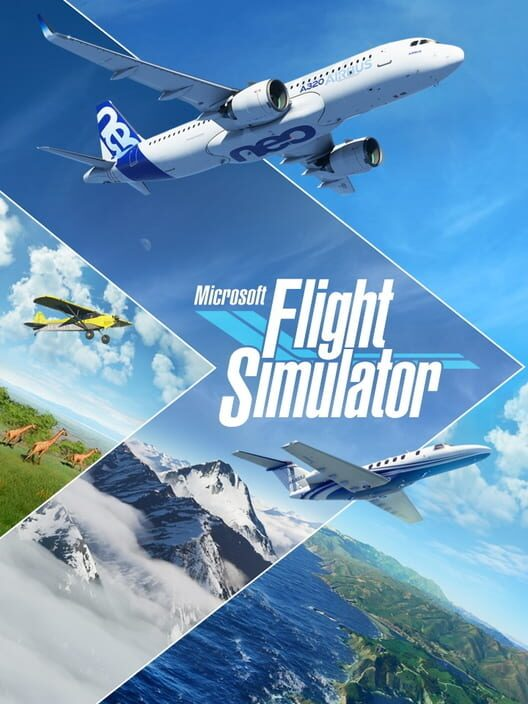 Microsoft Flight Simulator image