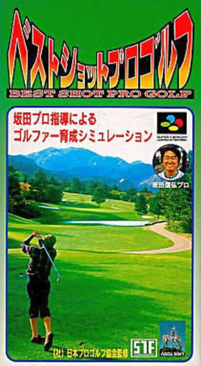 Best Shot Pro Golf Display Picture