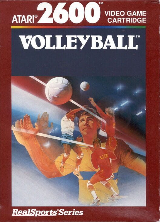 RealSports Volleyball image