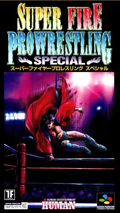 Super Fire Pro Wrestling Special Display Picture