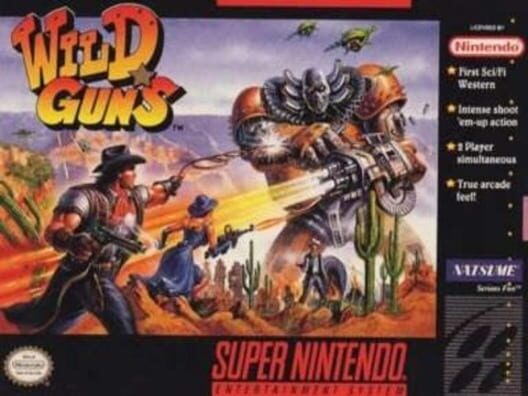 Wild Guns Display Picture