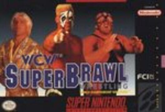 WCW SuperBrawl Wrestling Display Picture