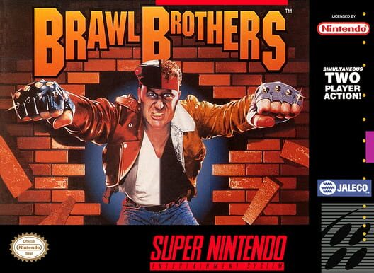 Brawl Brothers Display Picture