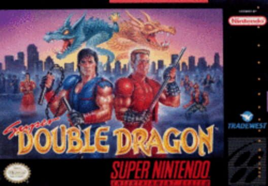 Super Double Dragon image