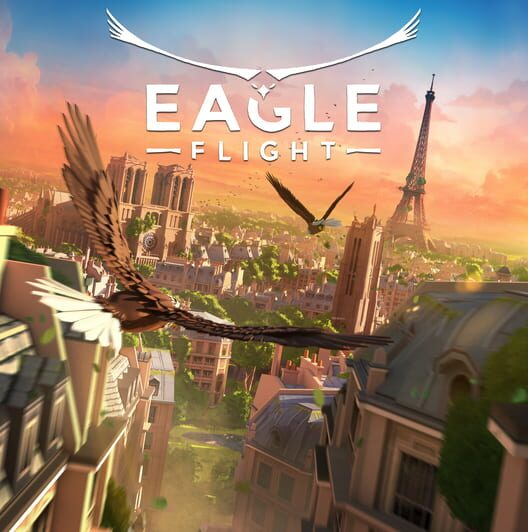 Eagle Flight image