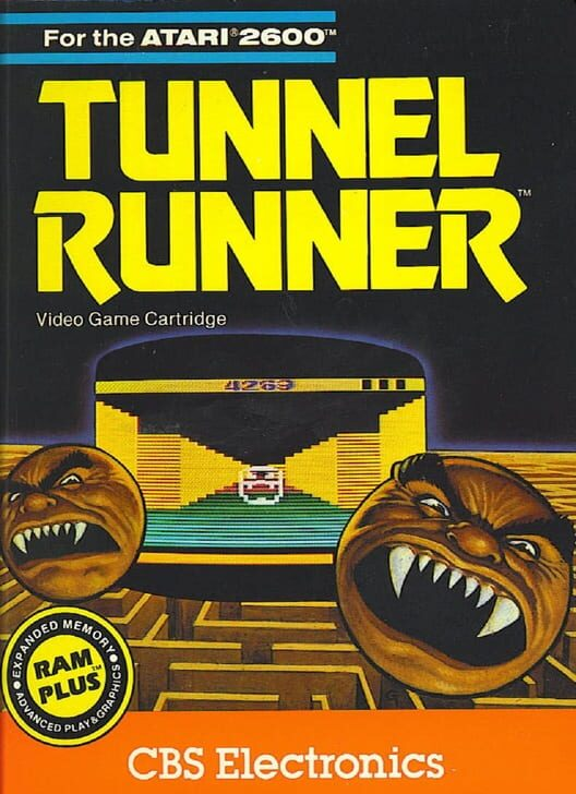 Tunnel Runner Display Picture