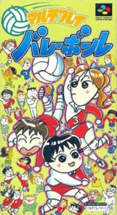 Multi Play Volleyball Display Picture