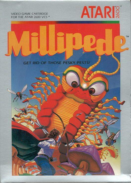 Millipede image