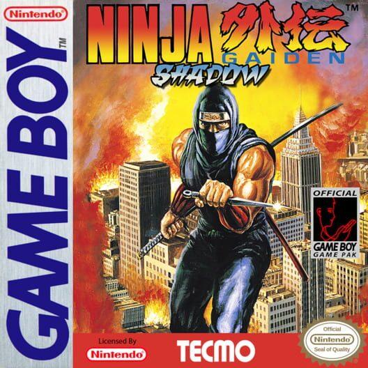 Ninja Gaiden Shadow image