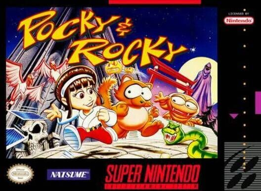 Pocky & Rocky Display Picture