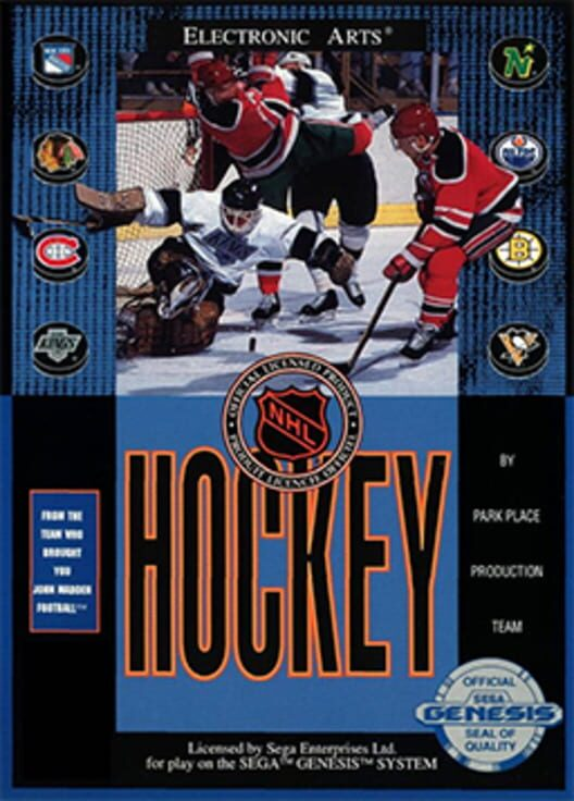 NHL Hockey Display Picture