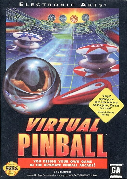 Virtual Pinball Display Picture