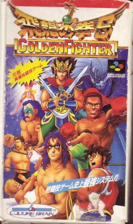 Hiryu no Ken S: Golden Fighter Display Picture