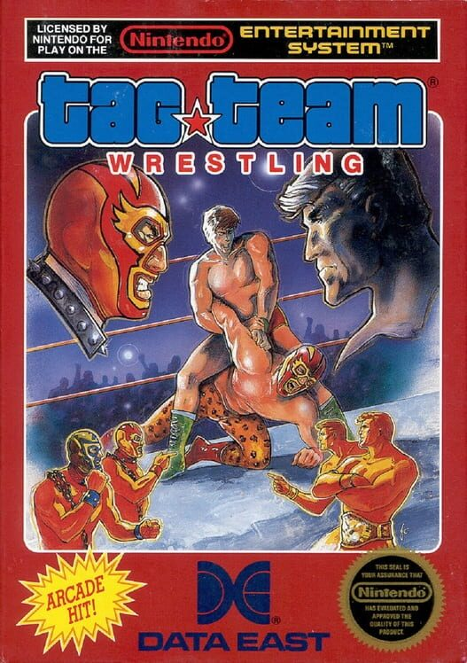 Tag Team Wrestling image