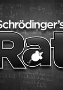 Schrödinger's Rat