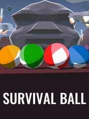 Survival Ball