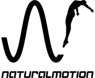 Logo of Natural Motion