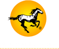 Logo of Appaloosa Interactive