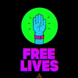 Logo of Free Lives Games
