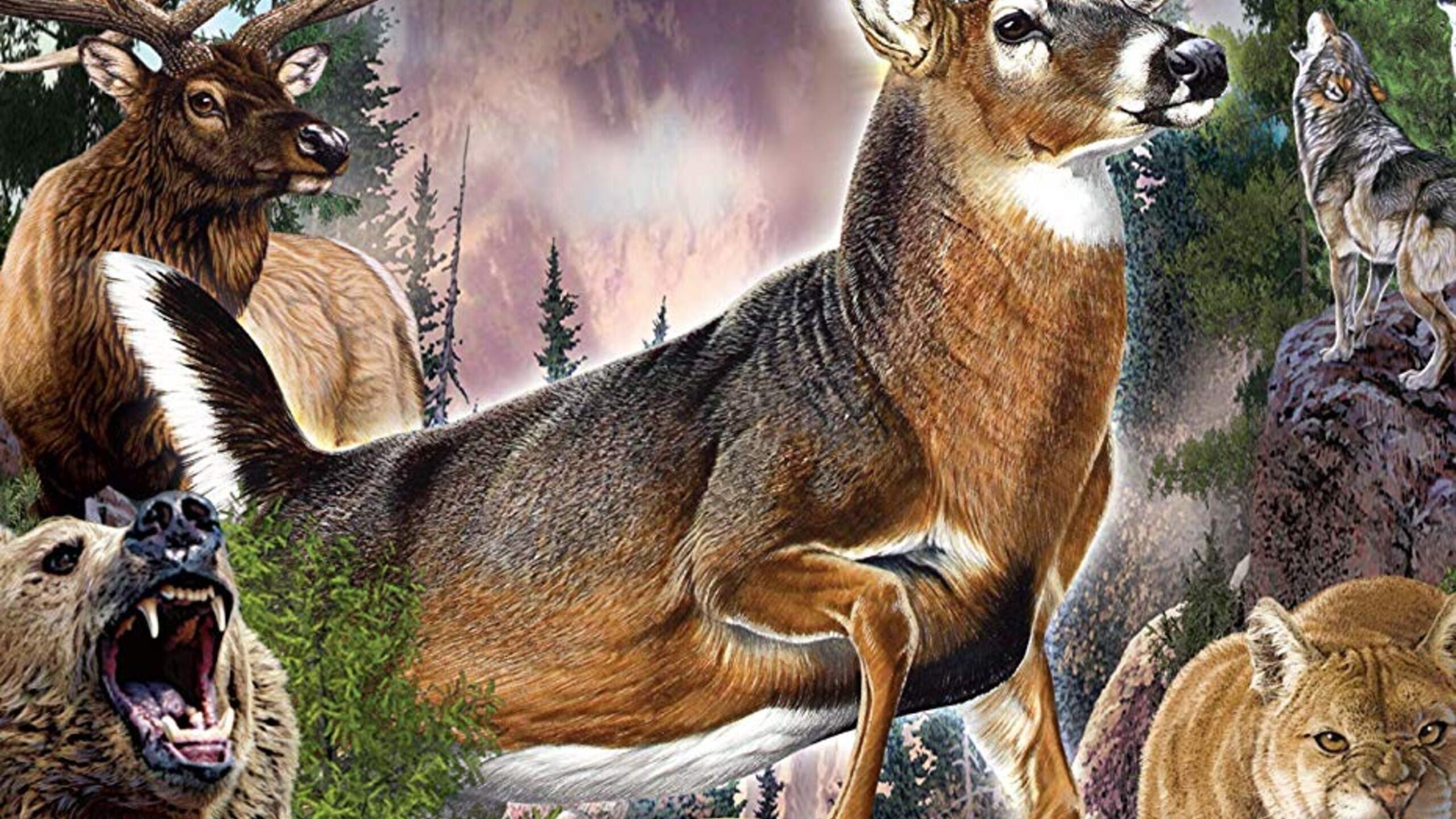 cabelas the hunt championship edition