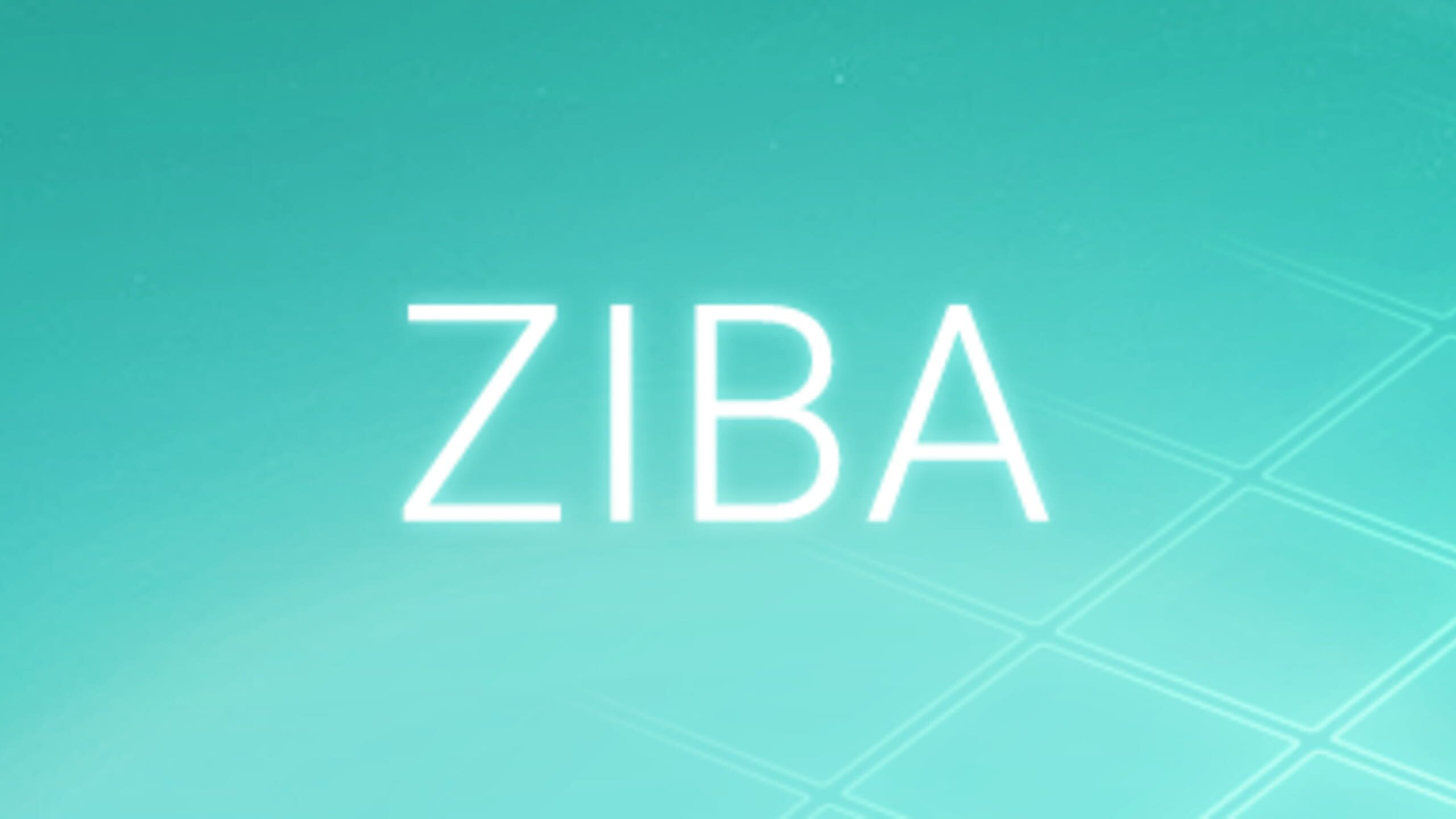 game cover art for Ziba