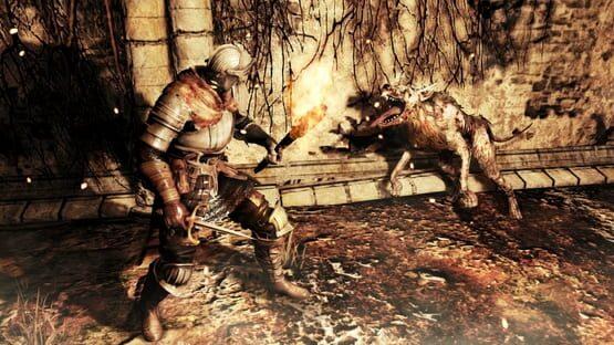 Dark Souls 2 Screenshot 2