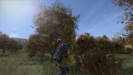 DayZ Screenshot 3